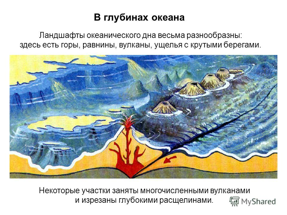 В глубинах океана Ландшафты океанического дна весьма разнообразны: здесь есть горы, равнины, вулканы, ущелья с крутыми берегами. Некоторые участки заняты многочисленными вулканами и изрезаны глубокими расщелинами.