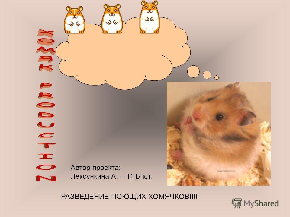 РАЗВЕДЕНИЕ ПОЮЩИХ ХОМЯЧКОВ!!!! Автор проекта: Лексункина А. – 11 Б кл.