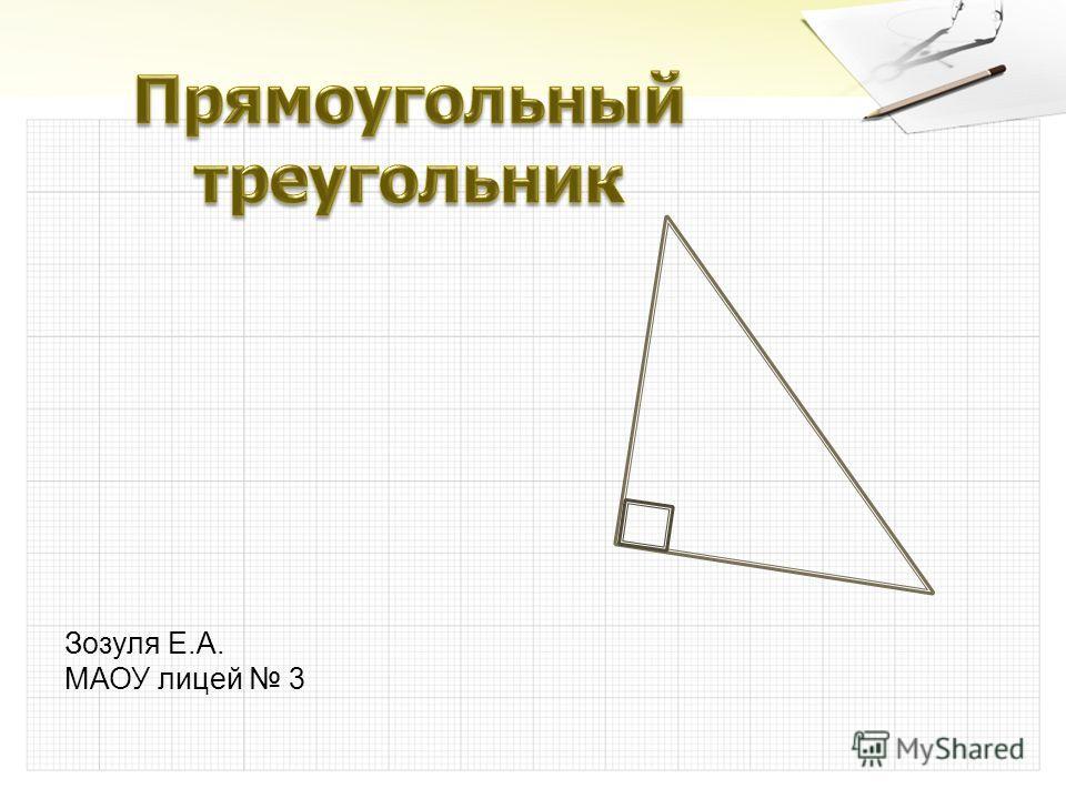 Зозуля Е.А. МАОУ лицей 3