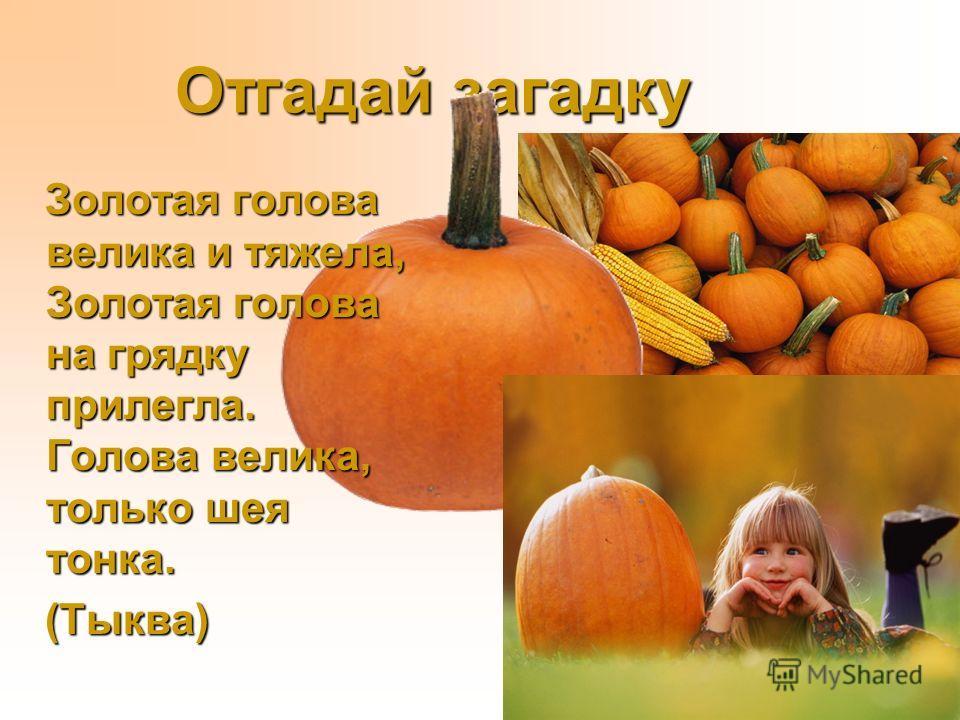 Овощи: морковь, репа, лук Тест на закрепление Игра Отгадай по описанию Отгадай по описанию Отгадываем загадки Составляем рассказ об овощах рассказ об овощах