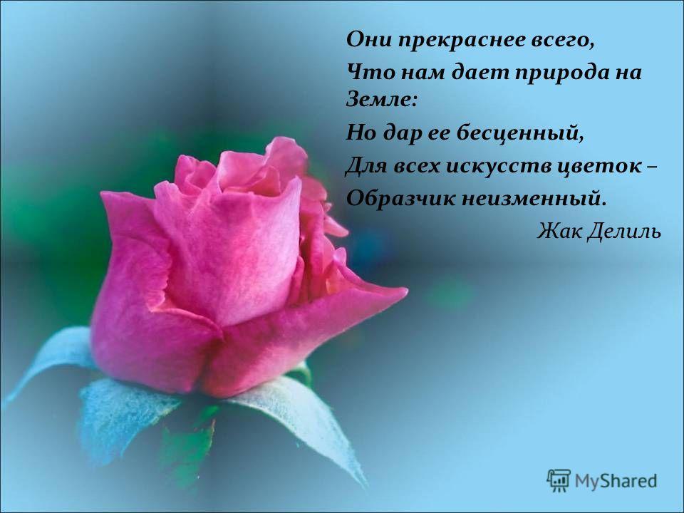 Они прекраснее всего, Что нам дает природа на Земле: Но дар ее бесценный, Для всех искусств цветок – Образчик неизменный. Жак Делиль