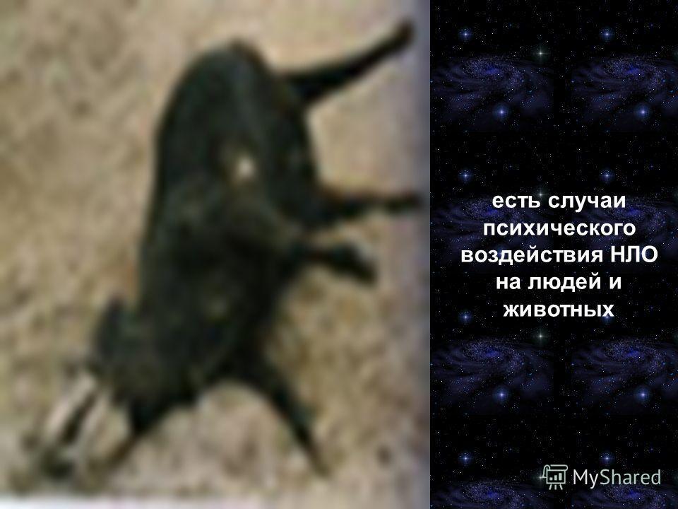 есть случаи психического воздействия НЛО на людей и животных