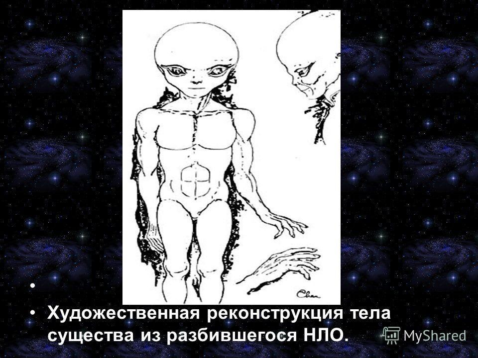 Художественная реконструкция тела существа из разбившегося НЛО.