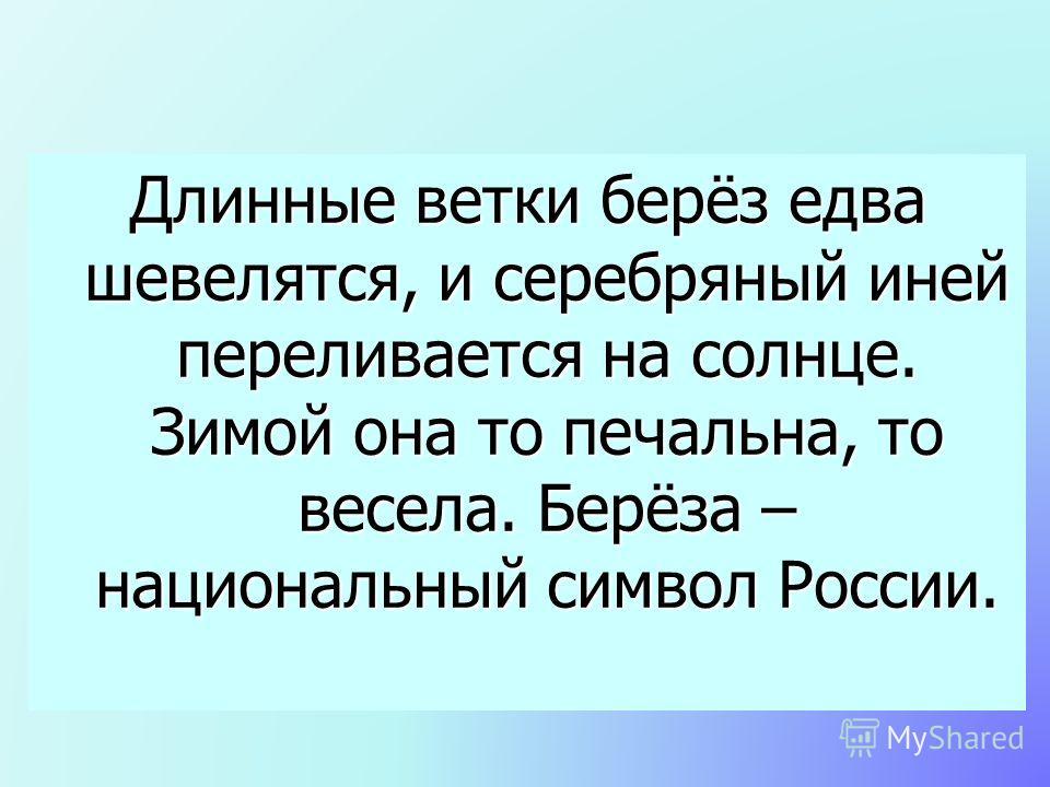 Длинные ветки берёз едва шевелятся, и серебряный иней переливается на солнце. Зимой она то печальна, то весела. Берёза – национальный символ России.