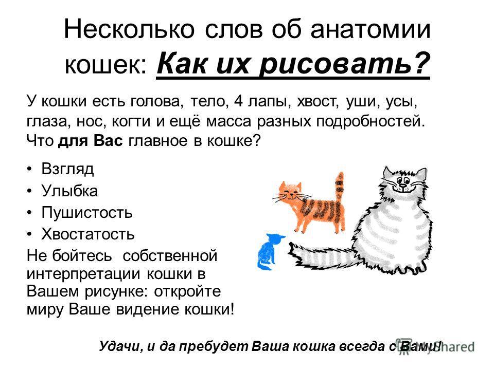 Несколько слов об анатомии кошек: Как их рисовать? Взгляд Улыбка Пушистость Хвостатость Не бойтесь собственной интерпретации кошки в Вашем рисунке: откройте миру Ваше видение кошки! У кошки есть голова, тело, 4 лапы, хвост, уши, усы, глаза, нос, когт