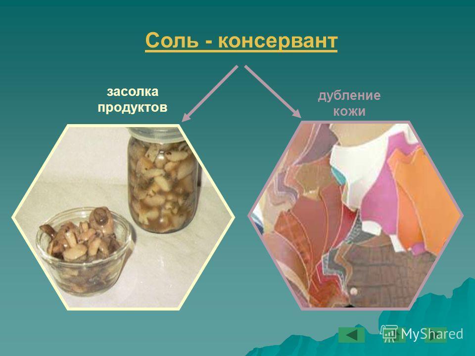 Соль - консервант дубление кожи засолка продуктов