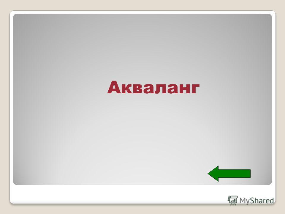 Акваланг