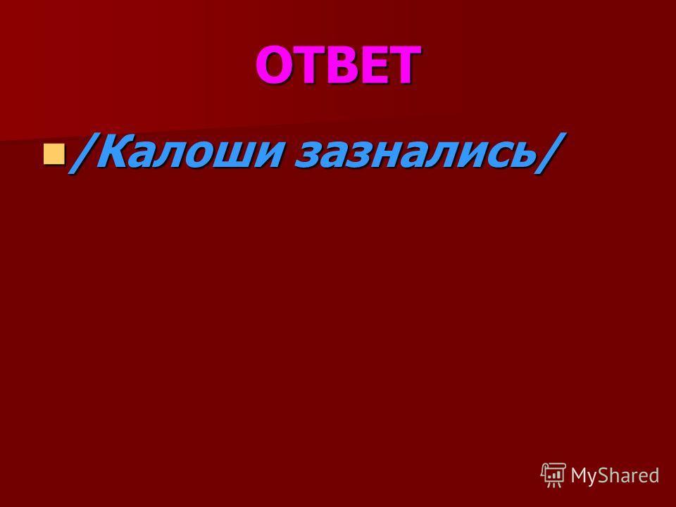 ОТВЕТ /Калоши зазнались/ /Калоши зазнались/