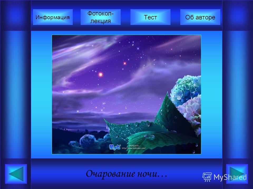 Очарование ночи… Фотокол- лекция Информация ТестОб авторе