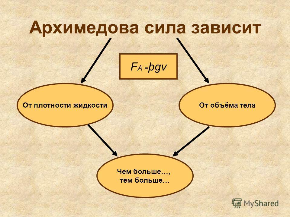 Архимедова сила зависит От плотности жидкостиОт объёма тела Чем больше…, тем больше… F A = þgv