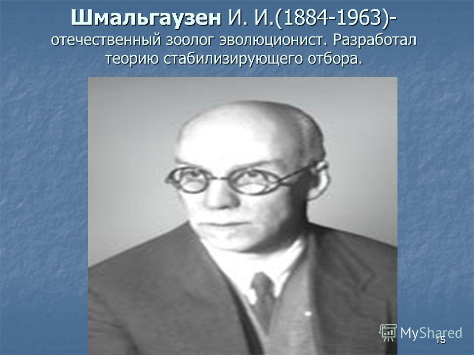 15 Шмальгаузен И. И.(1884-1963)- отечественный зоолог эволюционист. Разработал теорию стабилизирующего отбора.
