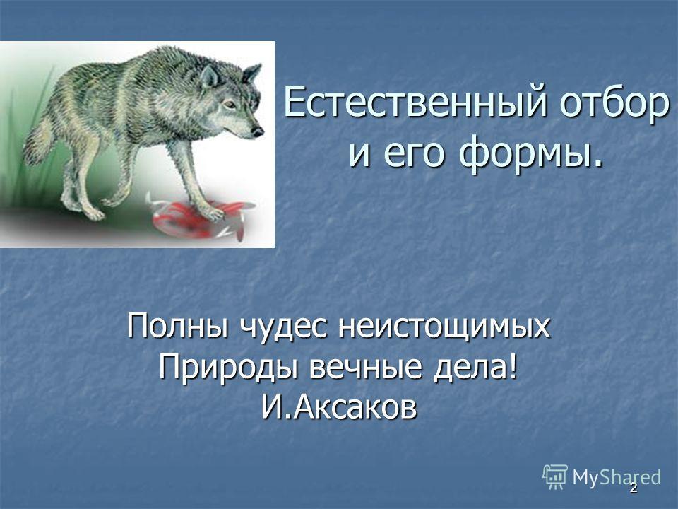 2 Естественный отбор и его формы. Полны чудес неистощимых Природы вечные дела! И.Аксаков