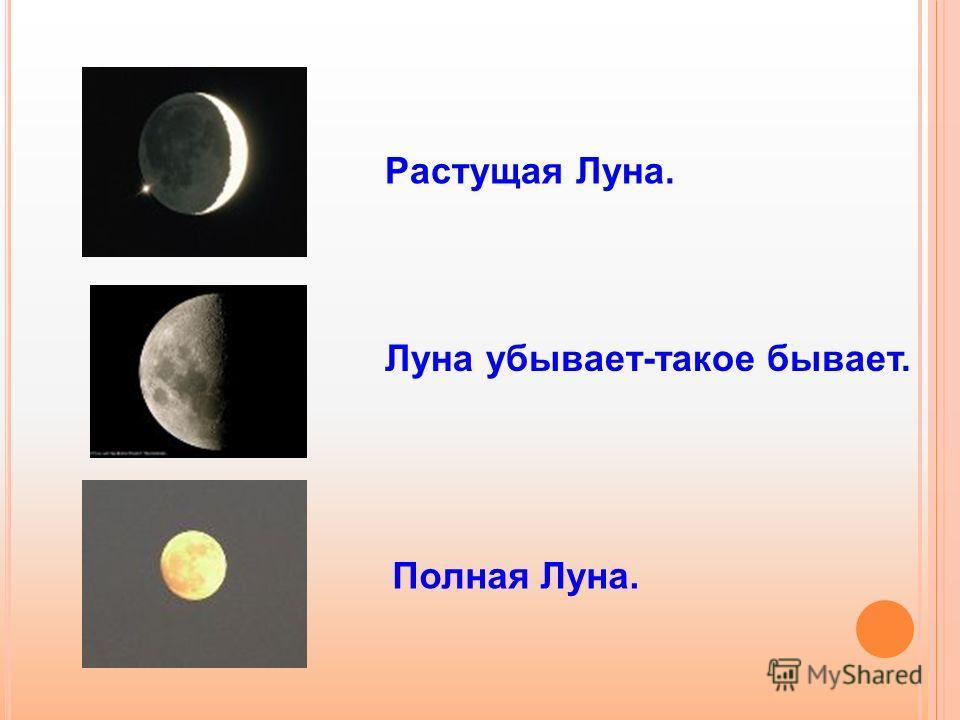 Растущая Луна. Луна убывает-такое бывает. Полная Луна.
