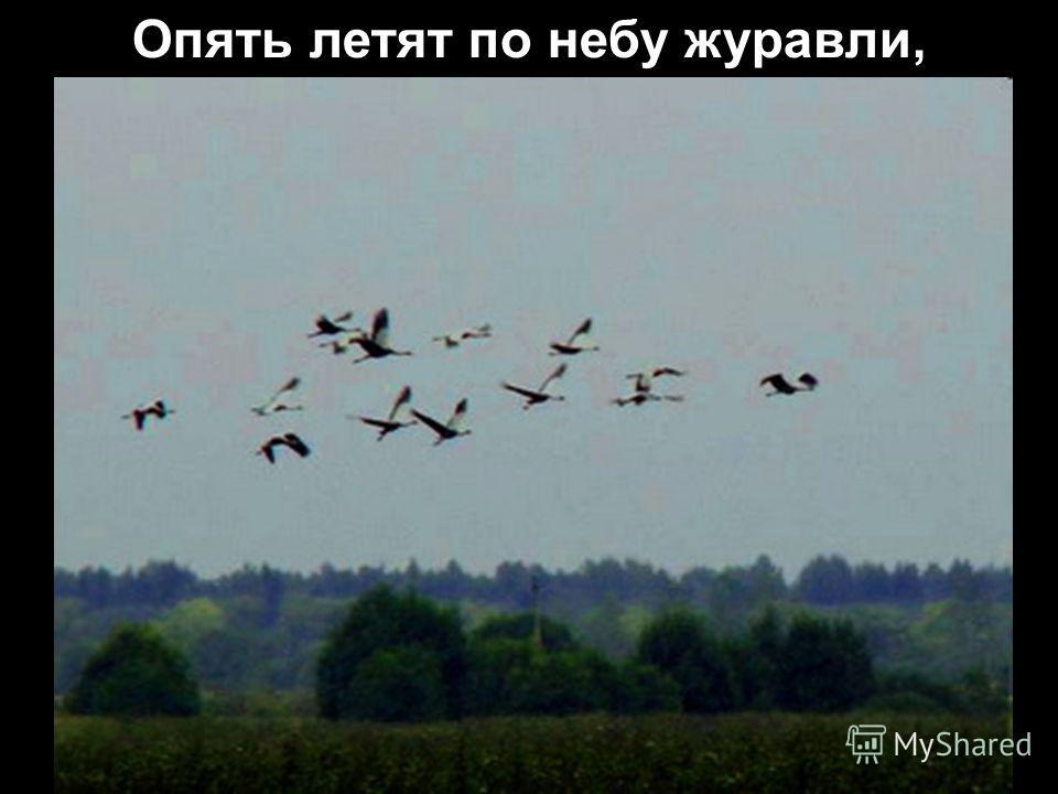 …И шёл на танк…во имя той любви»…