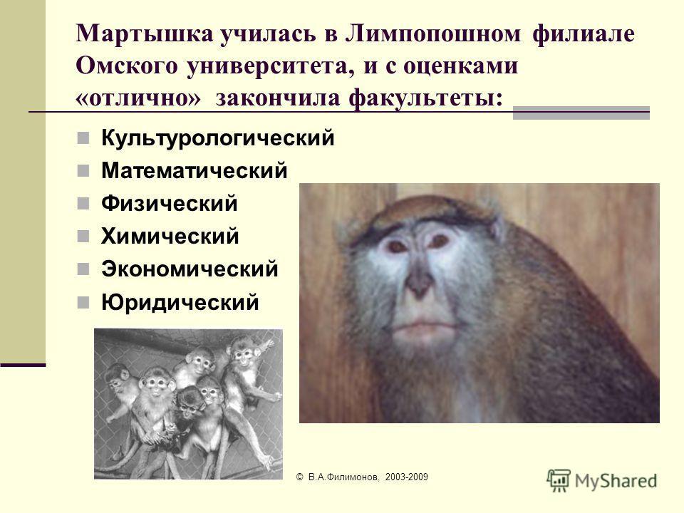 © В.А.Филимонов, 2003-2009 Что делает мартышка?