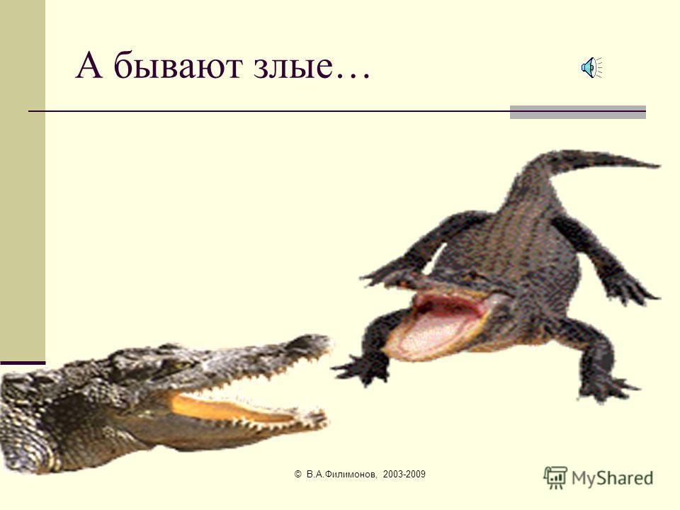 © В.А.Филимонов, 2003-2009 Крокодилы бывают добрые…