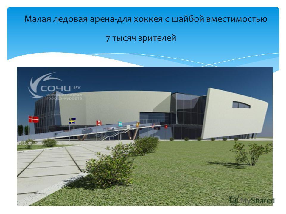 Малая ледовая арена-для хоккея с шайбой вместимостью 7 тысяч зрителей