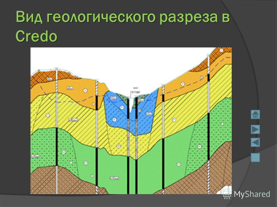 Вид геологического разреза в Credo