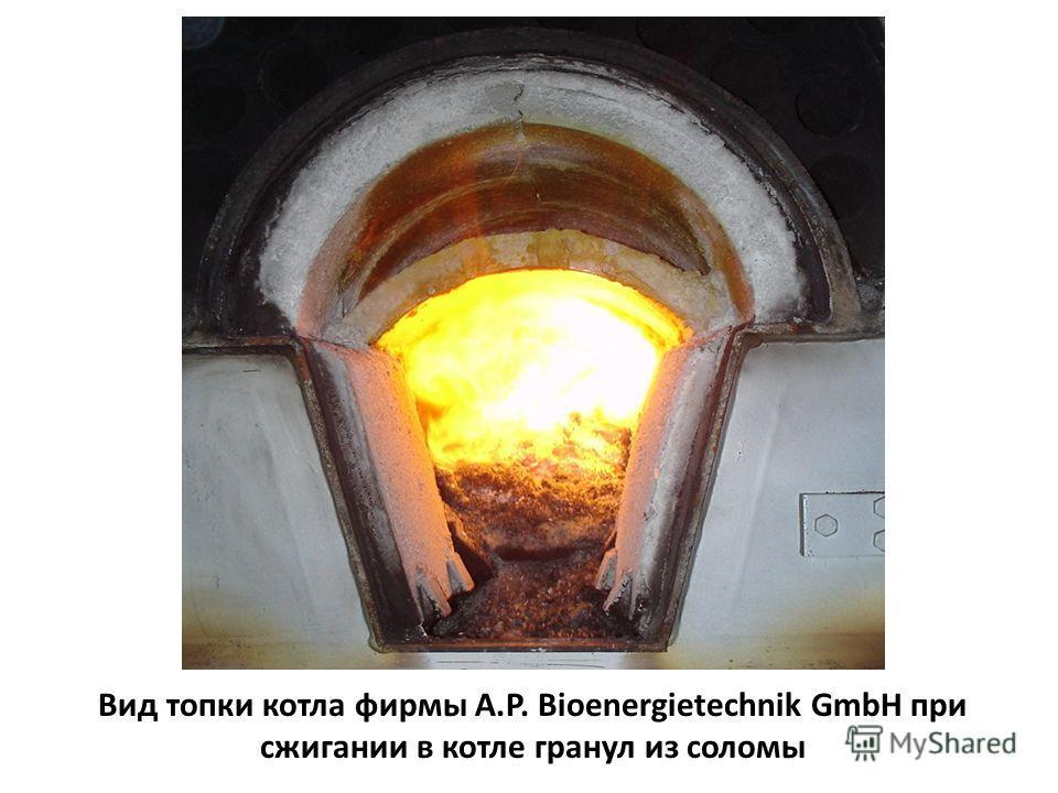 Вид топки котла фирмы A.P. Bioenergietechnik GmbH при сжигании в котле гранул из соломы