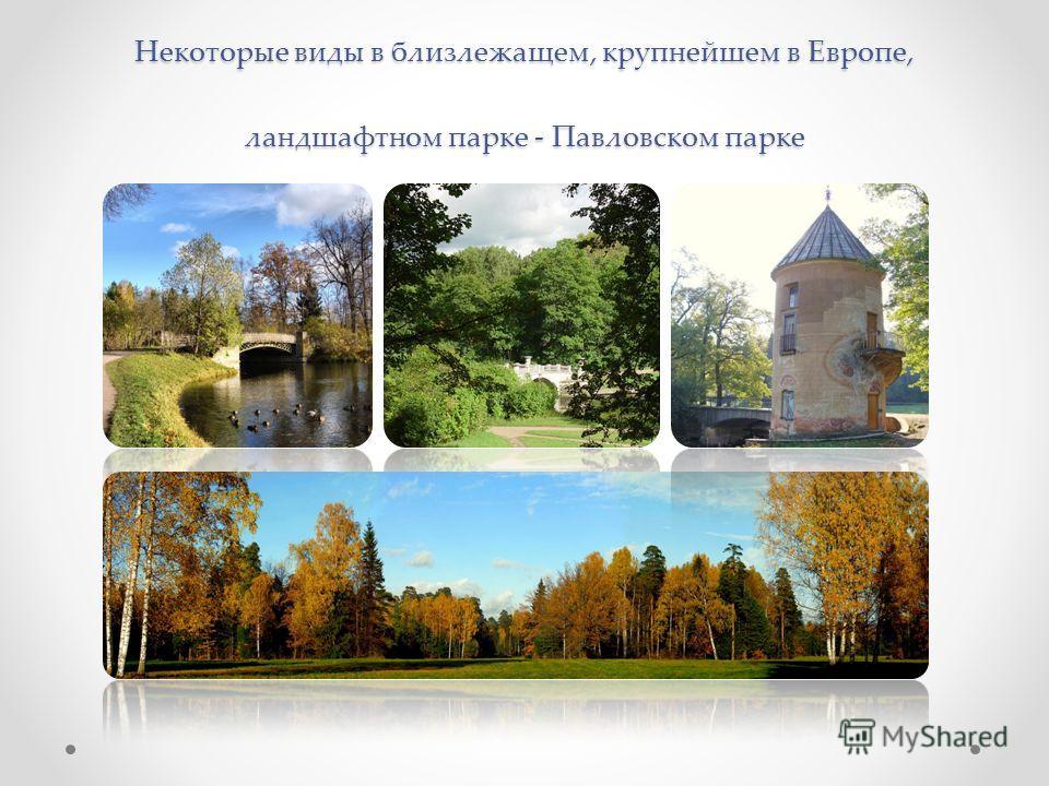 Некоторые виды в близлежащем, крупнейшем в Европе, ландшафтном парке - Павловском парке