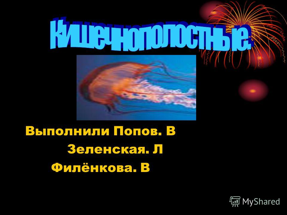Выполнили Попов. В Зеленская. Л Филёнкова. В