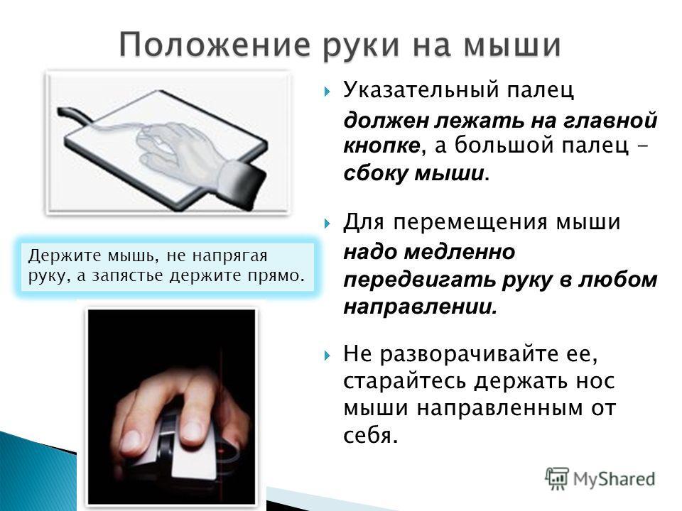 Указательный палец должен лежать на главной кнопке, а большой палец - сбоку мыши. Для перемещения мыши надо медленно передвигать руку в любом направлении. Не разворачивайте ее, старайтесь держать нос мыши направленным от себя. Держите мышь, не напряг