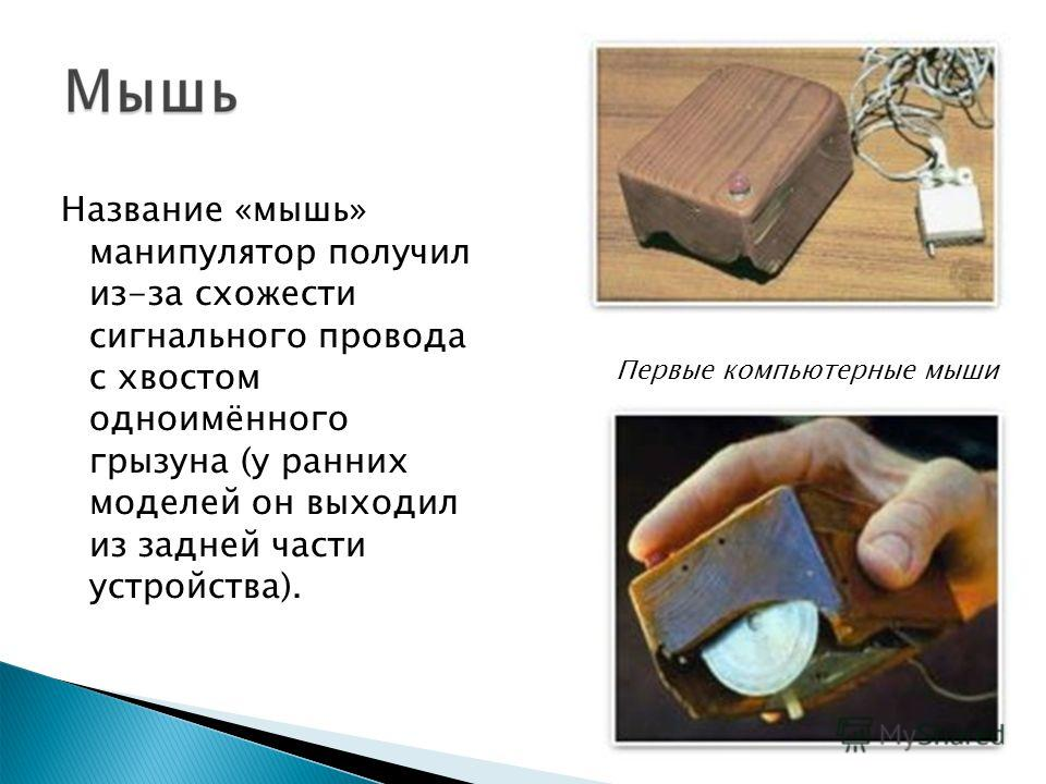 Название «мышь» манипулятор получил из-за схожести сигнального провода с хвостом одноимённого грызуна (у ранних моделей он выходил из задней части устройства). Первые компьютерные мыши
