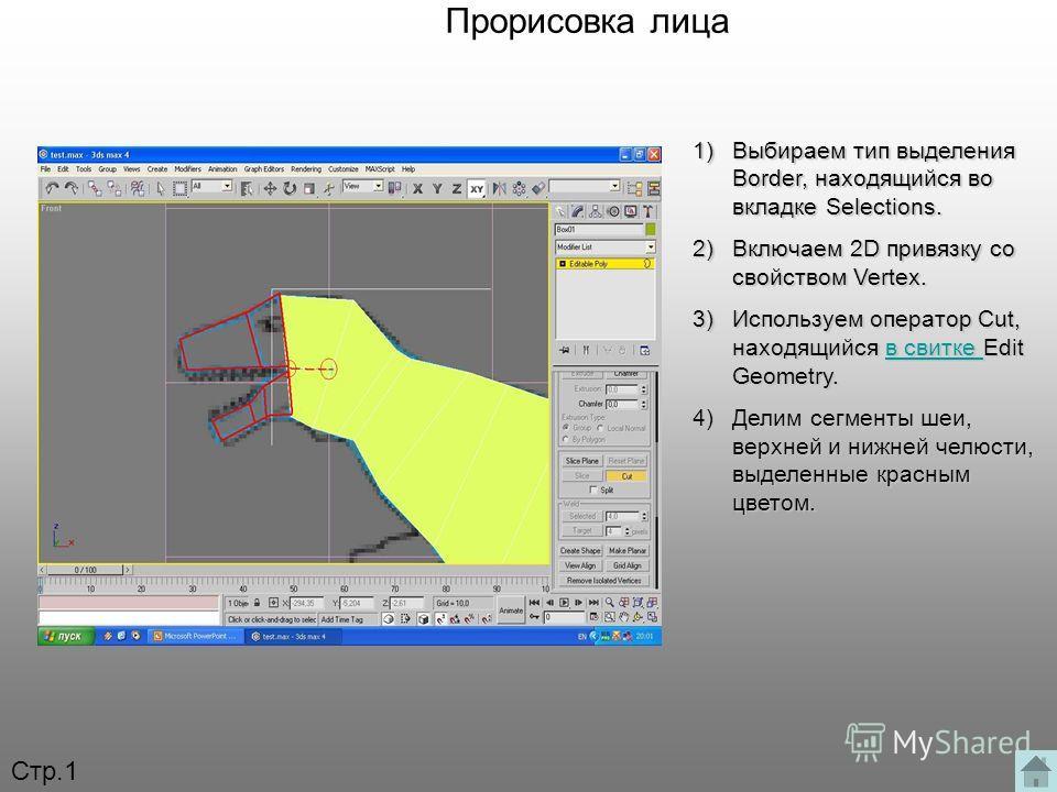 Прорисовка лица 1)Выбираем тип выделения Border, находящийся во вкладке Selections. 2)Включаем 2D привязку со свойством Vertex. 3)Используем оператор Cut, находящийся в свитке Edit Geometry. в свитке в свитке 4)Делим сегменты шеи, верхней и нижней че