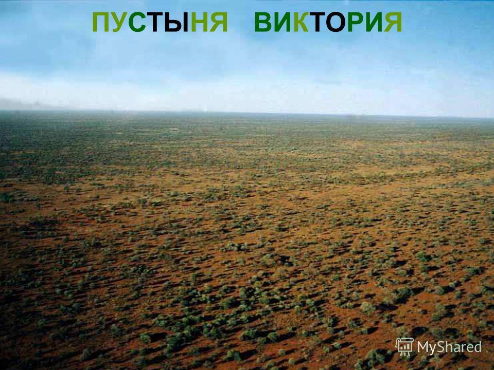 ПУСТЫНЯ ВИКТОРИЯ Пустыня виктория