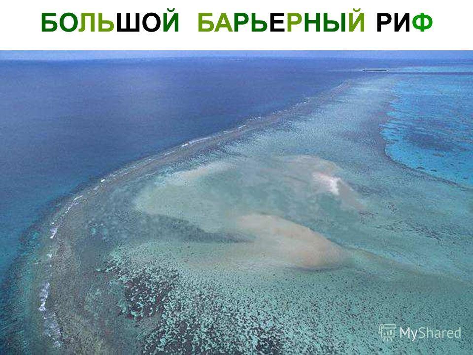 БОЛЬШОЙ БАРЬЕРНЫЙ РИФ Большой барьерный риф