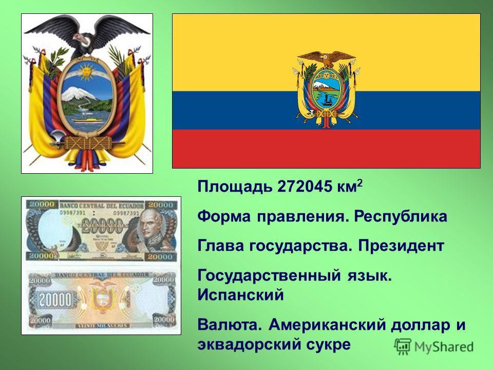 Площадь 272045 км 2 Форма правления. Республика Глава государства. Президент Государственный язык. Испанский Валюта. Американский доллар и эквадорский сукре