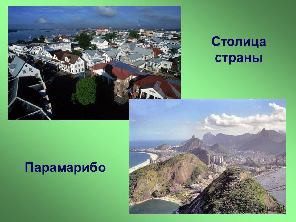 Столица страны Парамарибо