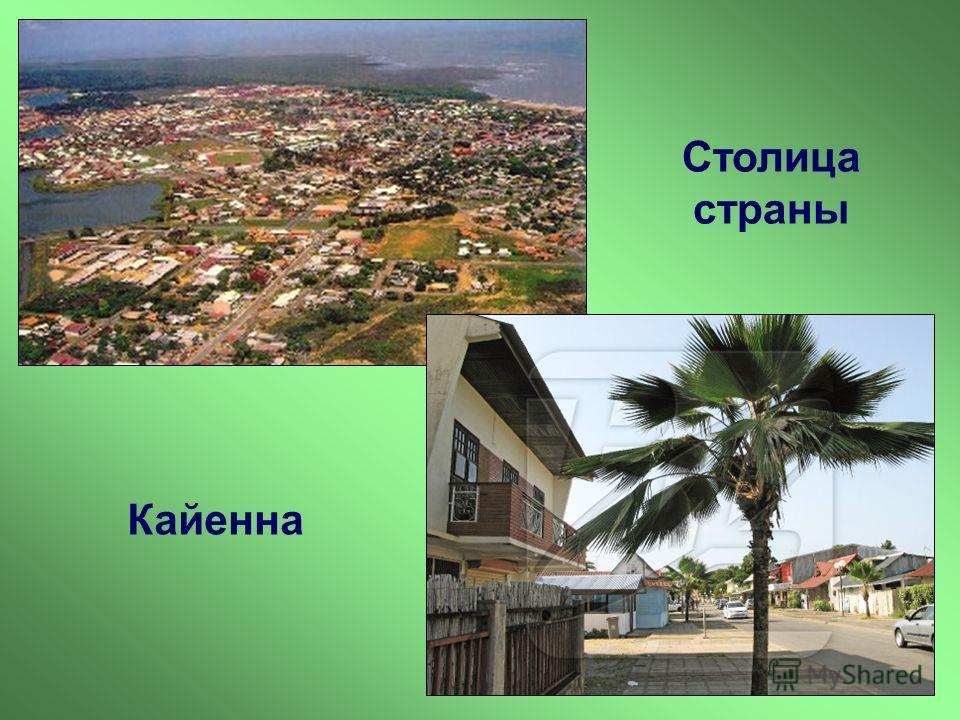 Столица страны Кайенна