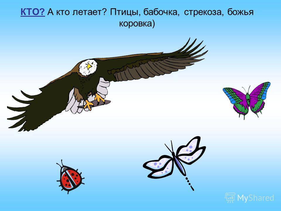 ЧТО? Посмотри на небо. Что летит по воздуху? - Самолет, воздушный шар, шарики, воздушный змей.