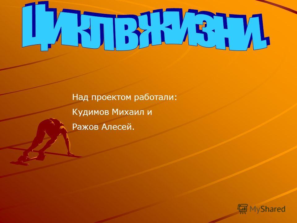 Над проектом работали: Кудимов Михаил и Ражов Алесей.
