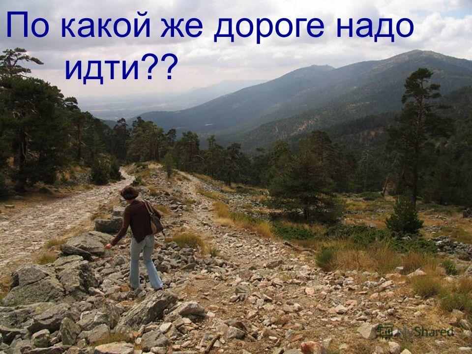По какой же дороге надо идти??