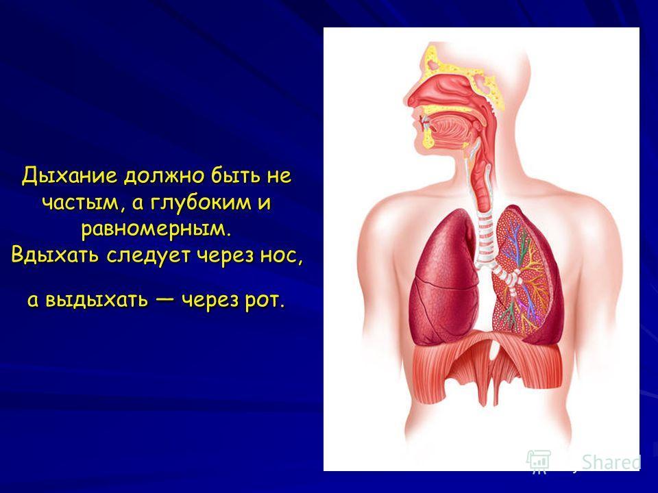 Почему нужно дышать через нос а не через рот