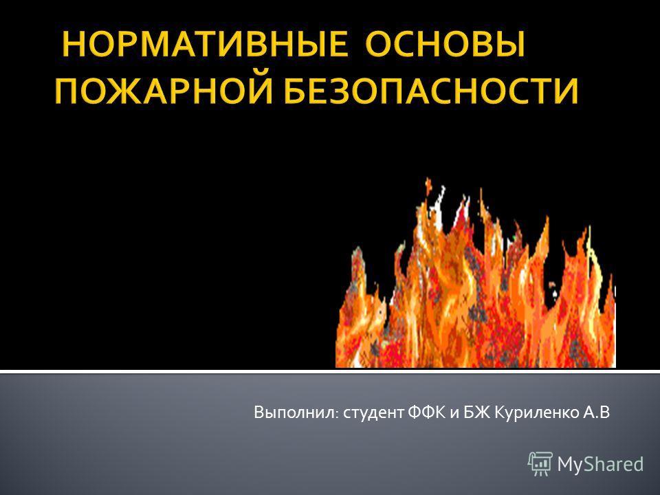 Выполнил: студент ФФК и БЖ Куриленко А.В