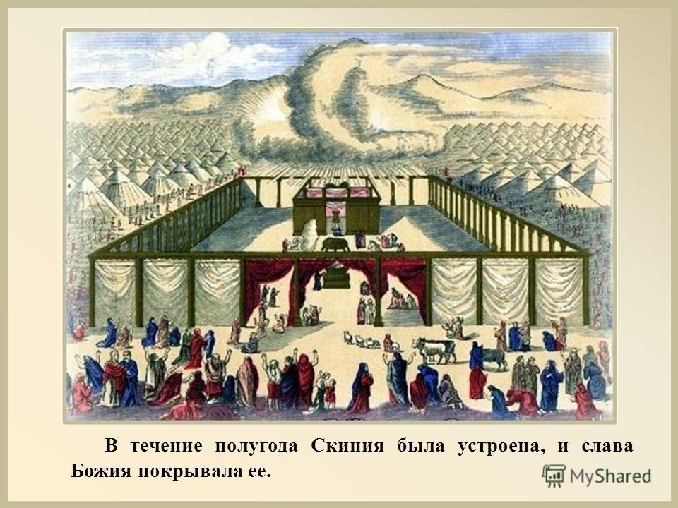 В течение полугода Скиния была устроена, и слава Божия покрывала ее.