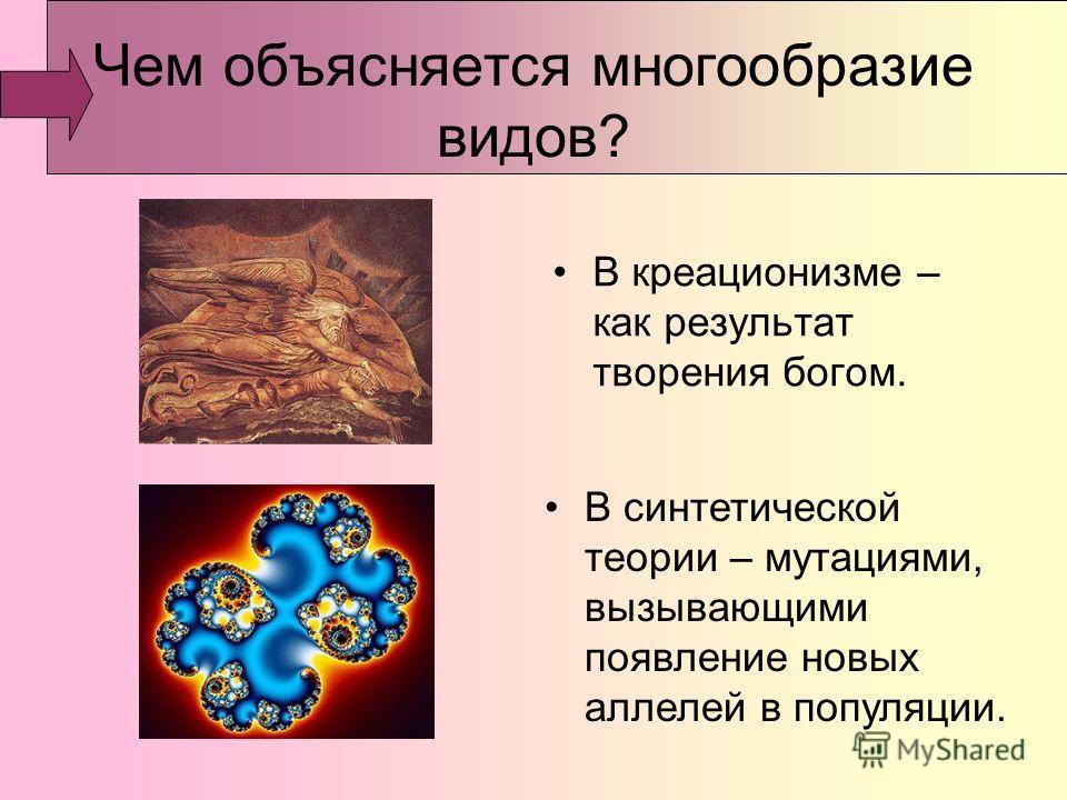 Чем объясняется многообразие видов? В креационизме – как результат творения богом. В синтетической теории – мутациями, вызывающими появление новых аллелей в популяции.