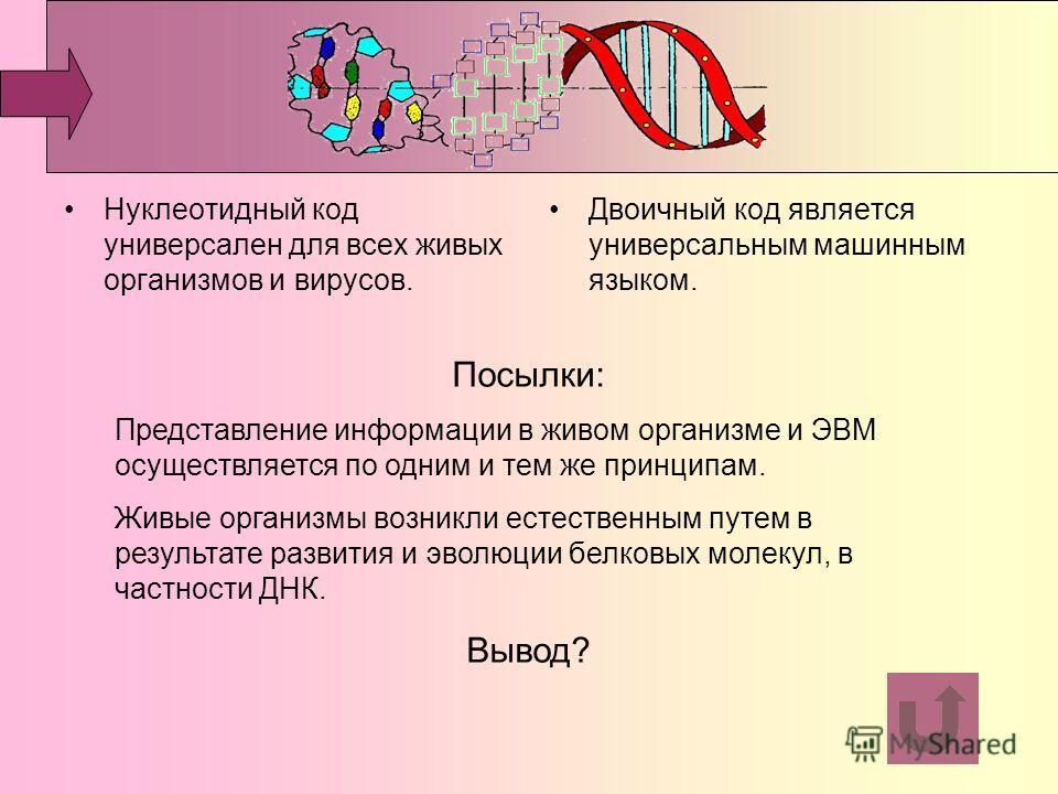 Нуклеотидный код универсален для всех живых организмов и вирусов. Двоичный код является универсальным машинным языком. Посылки: Представление информации в живом организме и ЭВМ осуществляется по одним и тем же принципам. Живые организмы возникли есте