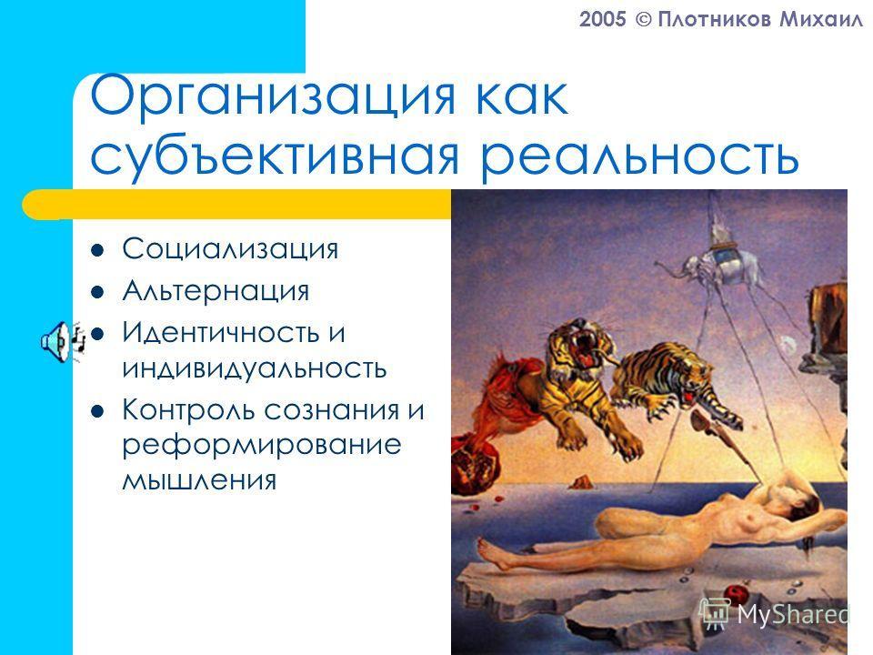 2005 Плотников Михаил Организация как субъективная реальность Социализация Альтернация Идентичность и индивидуальность Контроль сознания и реформирование мышления