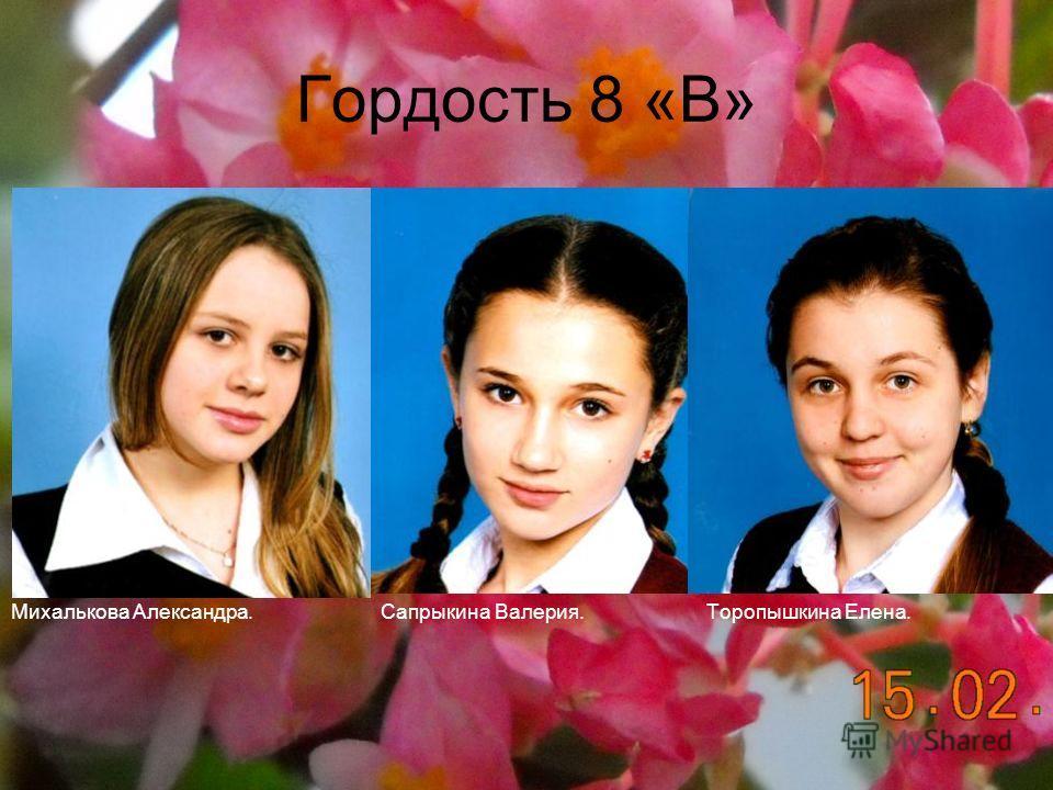 Гордость 8 «В» Михалькова Александра. Сапрыкина Валерия. Торопышкина Елена.