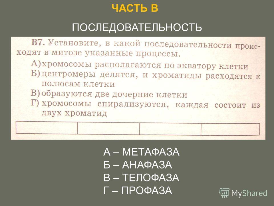 ЧАСТЬ В ПОСЛЕДОВАТЕЛЬНОСТЬ А – МЕТАФАЗА Б – АНАФАЗА В – ТЕЛОФАЗА Г – ПРОФАЗА