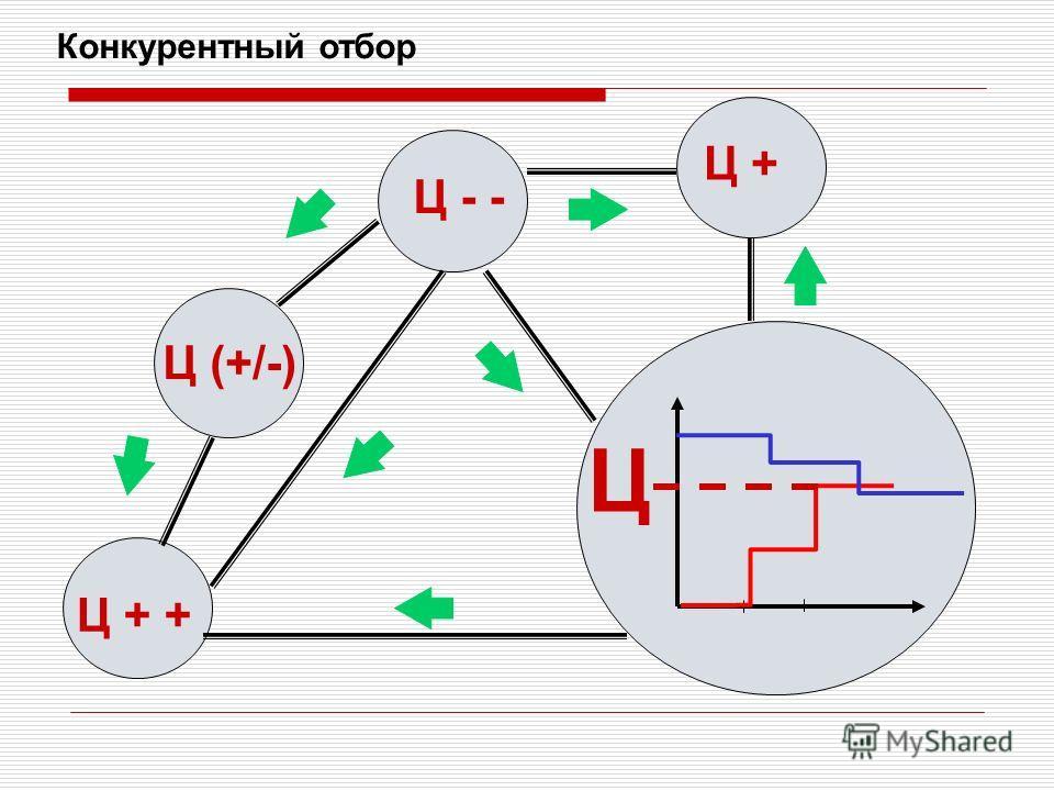 Конкурентный отбор Ц Ц + + Ц (+/-) Ц - - Ц +