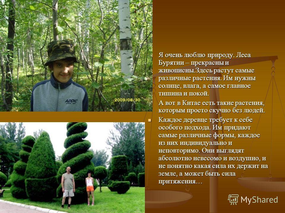 Я очень люблю природу. Леса Бурятии – прекрасны и живописны.Здесь растут самые различные растения. Им нужны солнце, влага, а самое главное тишина и покой. А вот в Китае есть такие растения, которым просто скучно без людей. Каждое деревце требует к се