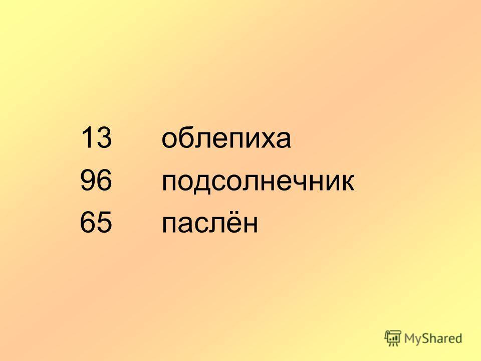 13 облепиха 96 подсолнечник 65 паслён