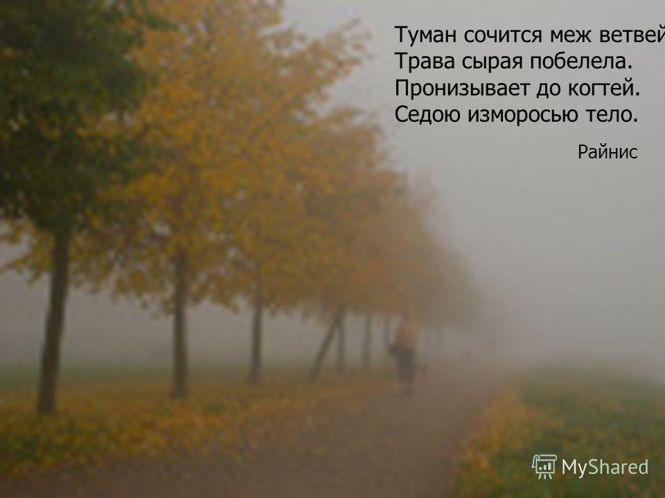 Туман сочится меж ветвей, Трава сырая побелела. Пронизывает до когтей. Седою изморосью тело. Райнис