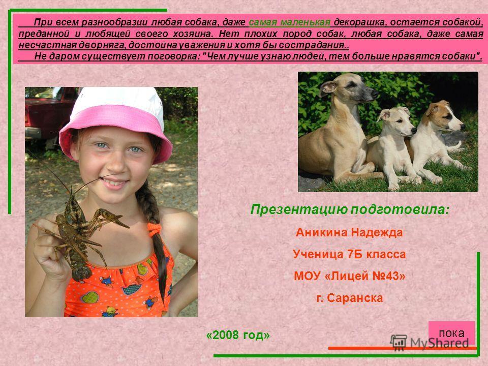 Презентацию подготовила: Аникина Надежда Ученица 7Б класса МОУ «Лицей 43» г. Саранска «2008 год» При всем разнообразии любая собака, даже самая маленькая декорашка, остается собакой, преданной и любящей своего хозяина. Нет плохих пород собак, любая с