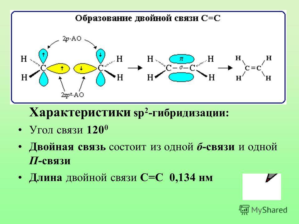 Характеристики sp 2 -гибридизации: Угол связи 120 0 Двойная связь состоит из одной б-связи и одной П-связи Длина двойной связи С=С 0,134 нм